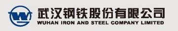 武汉钢铁股份有限公司